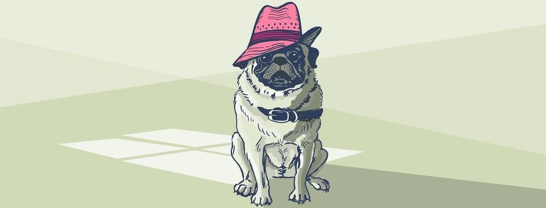 a pug wearing a sun hat