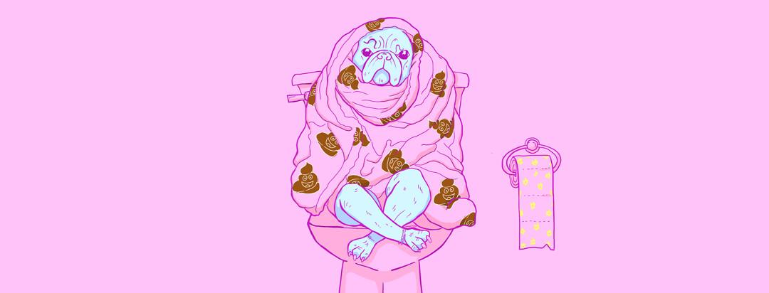 Pug sitting on a toilet wrapped in a poop emoji blanket